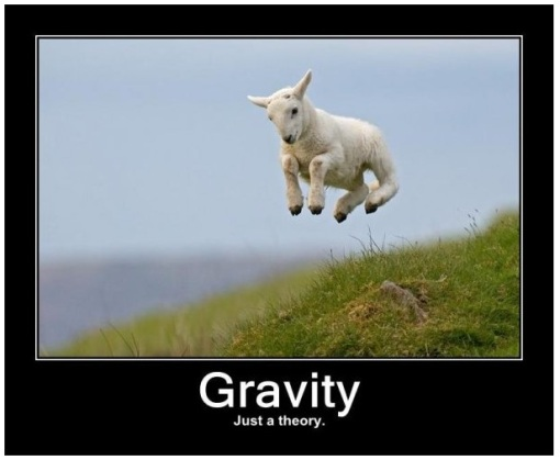 http://seesawfactory.files.wordpress.com/2010/12/goat_gravity.jpg?w=510